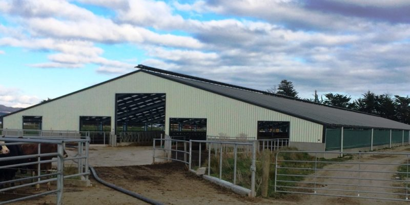 Freestall Cow Barns